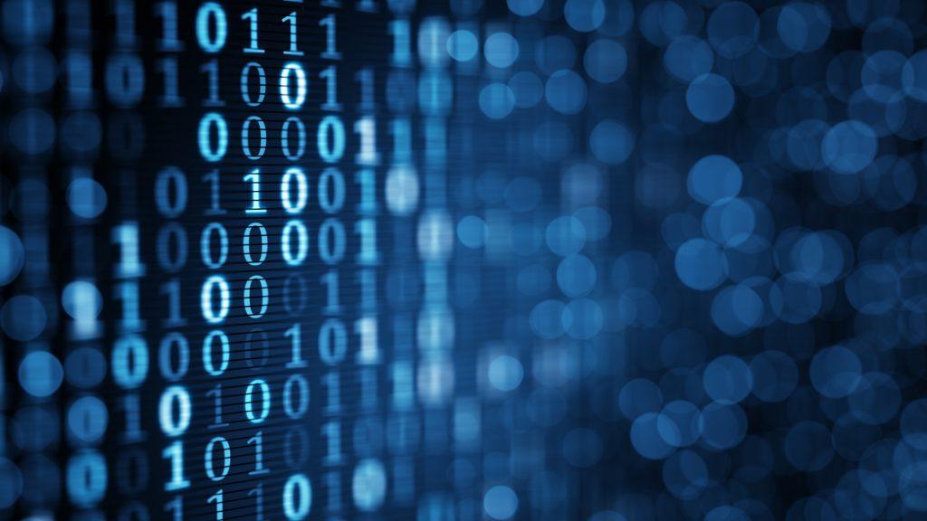 Baza danych, ASP.net